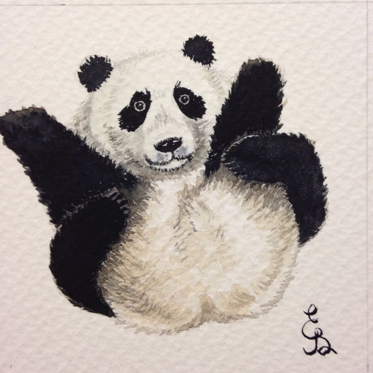 Watercolor painting panda bear