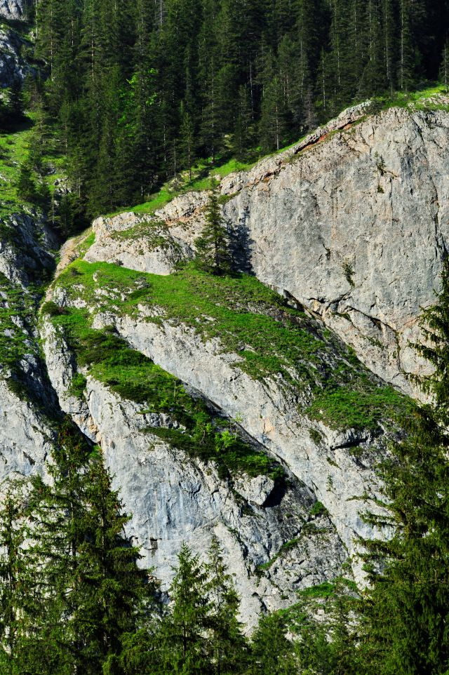 Există aici numeroase puncte de belvedere, întrepătrunderi ale pereţilor cvasiverticali ai stâncăriilor cu păduri de conifere, ansamblul primind plusvaloare prin frumuseţea Lacului Roşu şi a cursului Bicazului care ieşind din lac, coboara prin chei.