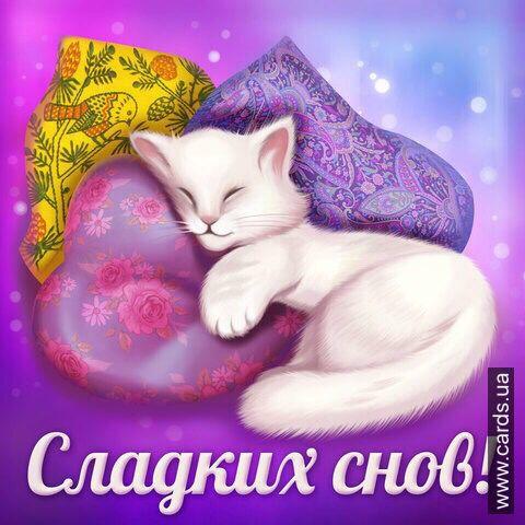 Картинка сладких снов оленька