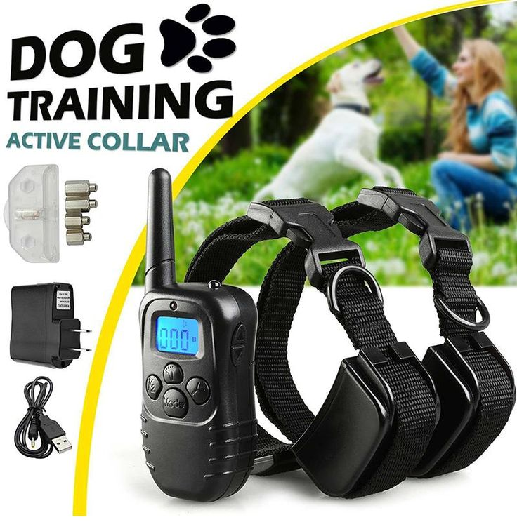 Pet trainer Rechargeable training Collar has been proven safe, reliable, comfortable, humane training and effective for all pet over 8 pounds/6 months. This system assists you in controlling your pet without a leash in a range up to 300m. At a push of a button, the Remote Transmitter sends a signal, activating the Receiver Collar. Using the Remote Trainer consistently and correctly, much misbehavior that your pet exhibits can be corrected or any basic obedience commands can be taught.
