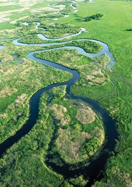 Biebrza River, Poland   - Explore the World with Travel Nerd Nici, one Country at a Time. http://TravelNerdNici.com