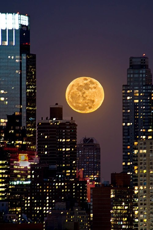Super Moon Over NYC / Mother would tells us that's the man in the moon ~ :)