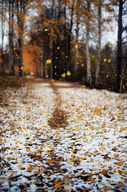 First snow, Varkaus, Finland