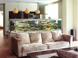 aquarium as room divider - Google Search