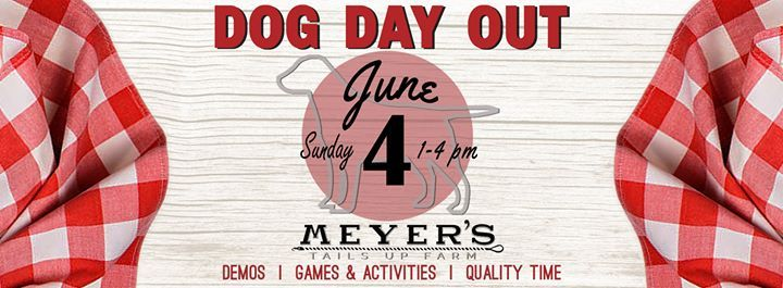 Meyers Tails Up Farm 2nd Annual Dog Day Out