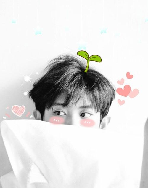 So cute ❤❤