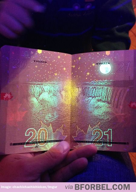 The Canadian passport under black light… too cool!