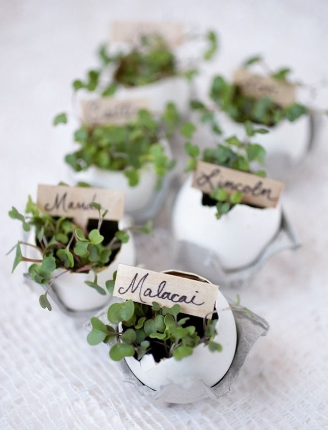 You can make a set of DIY eggshell place card holders for your spring brunch or dinner party with this easy project.