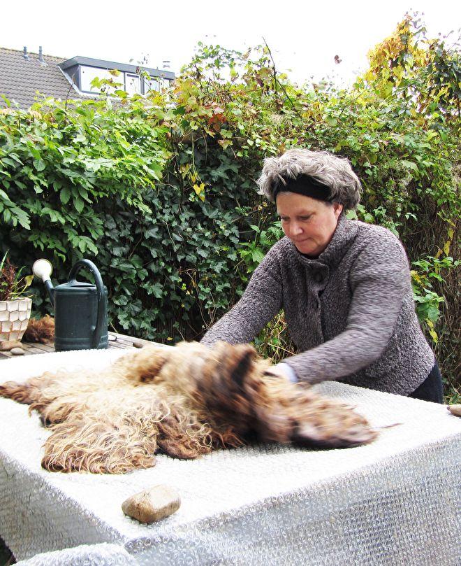 In de winter periode zijn we veel binnen en maken het thuis gezellig en warm. Een prachtig schapenvachtje kan dan niet ontbreken.