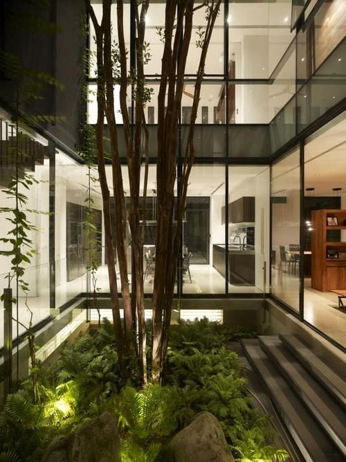 Indoor Garden Lighting Part - 26: Landscape Lights In The Ferns. Internal CourtyardIndoor GardenAtrium ...