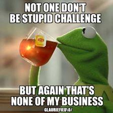 1000+ images about Kermit Observes Life. ;0 on Pinterest | 2014 ...
