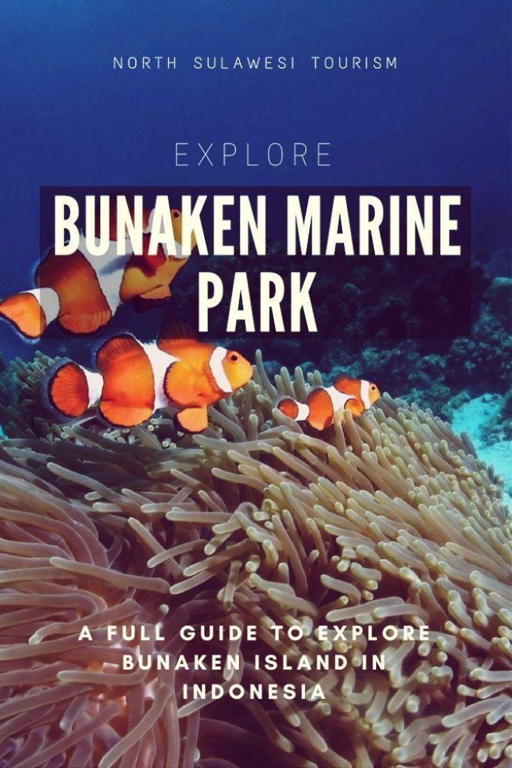 A comprehensive guide to explore Bunaken Marine Park or Bunaken National Park