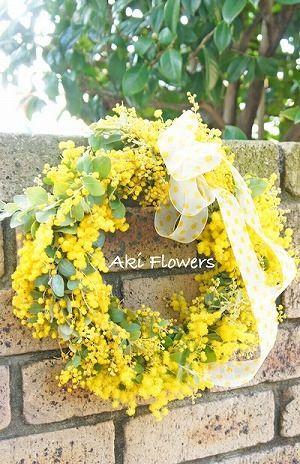 mimosa wreath*Aki Flowers  スタジオミュゼ♪