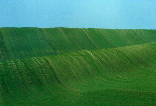 Cristina Marchi: Ansel Adams, Franco Fontana, Joel Meyerowitz: tre paesaggi a confronto