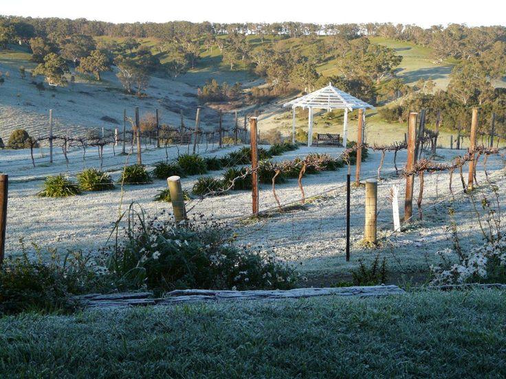 Home in South Australia  www.christiesbeachprofessionals.com.au #realestate #realestatesouthaustralia #Hills #Garden #Pretty