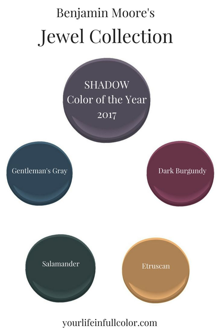Benjamin Moore's Shadow 2117-30 is an easy fit within a jewel tone palette:  Gentleman's Gray 2062-20, Dark Burgundy 2075-10, Salamander 2050-10, Etruscan AF-355.