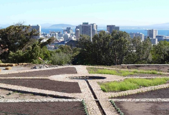 VISI Magazine article on growing whole farms in urban settings: Cape Town, South Africa