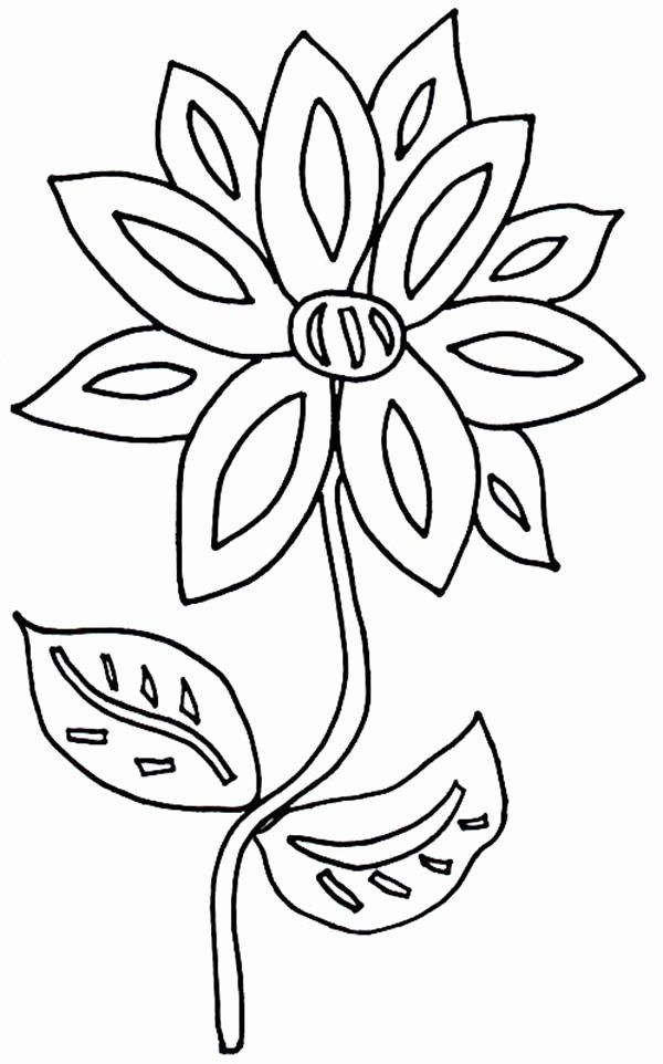 Coloring Page Of A Flower Fresh Flower In The Front Yard Coloring Page Download Print Flower Coloring Pages Cartoon Flowers Flower Drawing