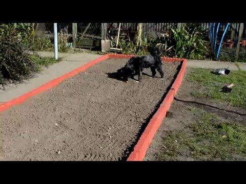 Make Your Own Concrete Edging Part 2 - YouTube