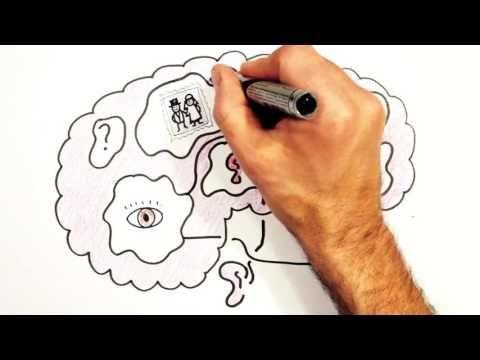 Mindset: Je geweldige brein! - YouTube