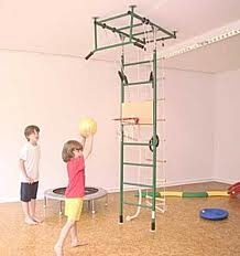 Children playing basket ball