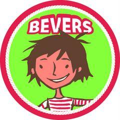 Vrijwilligers stage, Ik heb 20 weken iedere zaterdag ochtend stage gelopen bij scouting sint aloyisius in Veldhoven. Dit was in de jongste groep, kinderen met de leeftijd van 3 tot 6 jaar. (2011)