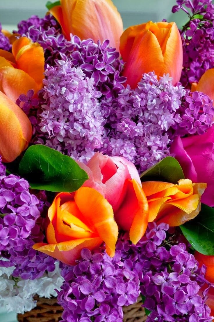 Love this pop of color!Beautiful Flower, Colors Combos ...