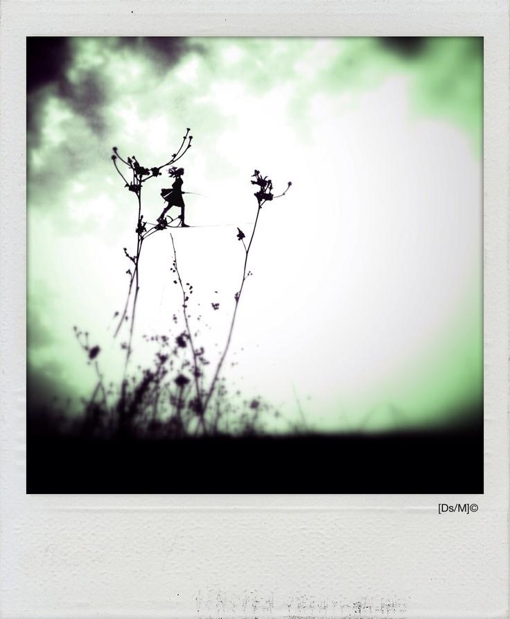 INSAPORIRE PETALI Cammini tra quei fiori traballanti,  sotto quintali di sole, con la lingua ad insaporire petali che le labbra dischiude.  Acqua ed aria nei polmoni.  Miei e miei ancora.  Vieni, e da qui ti porterò a danzare,  ripiegata nei miei occhi, fra parole lacere e sensazioni di gola.   http://paralleluniverseinpolaroid.wordpress.com