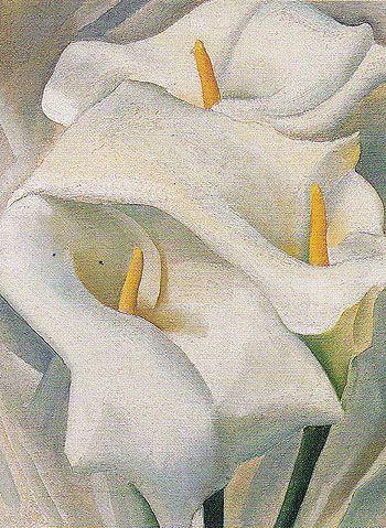 Georgia O'Keeffe. Calla Lilies 1924