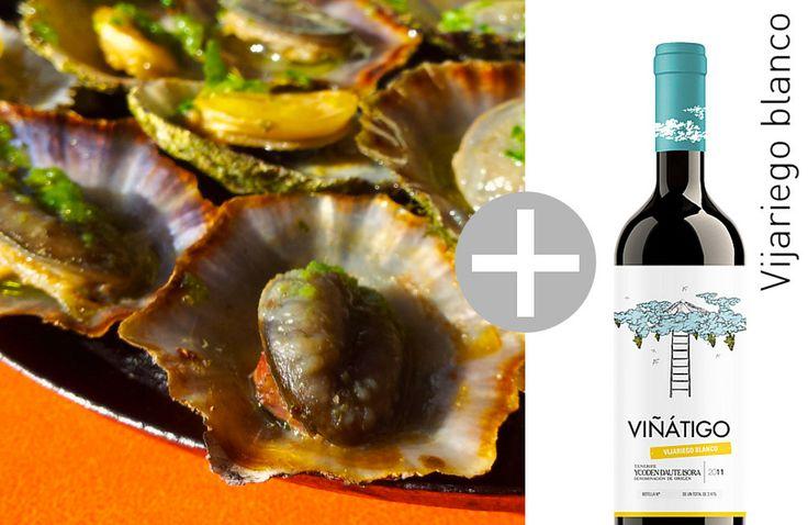 """Eine Spezialität von der Küste der Kanarischen Inseln: """"Lapas"""" mit grüner Mojo begleitet von unserem mit ausgeprägter Säure Weißwein Viñátigo vijariego blanco"""