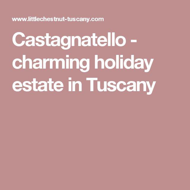 Castagnatello - charming holiday estate in Tuscany