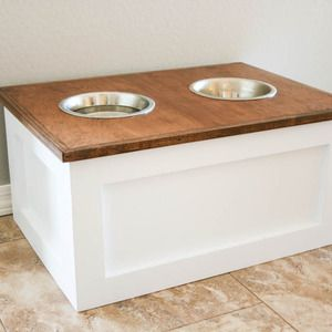 Dog Flipping Food Bowl Over