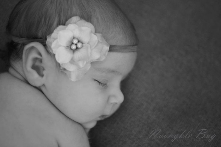 Beautiful headband by whimsical love design props cape town newborn photography noongkle bug photography www