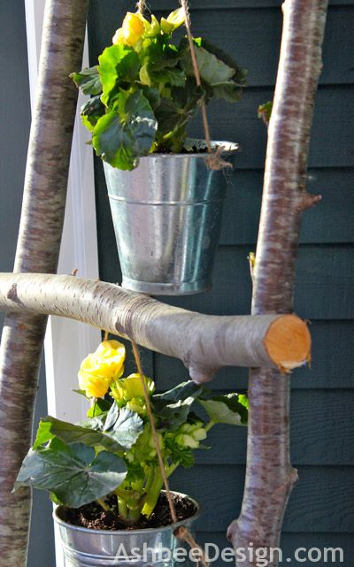 A ladder from Sticks with planters hanging how simple and creative.