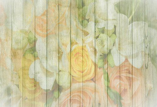 Primavera, Fondo, Lirios, Rosas