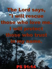 Psalm 91-14: 91 14 Books, Angry Birds Cupcakes, Wisdom, 91 14 Gisela Foxes, Savior, Bible, 91 14 Amenities, Psalms 9114, Psalms 91 14