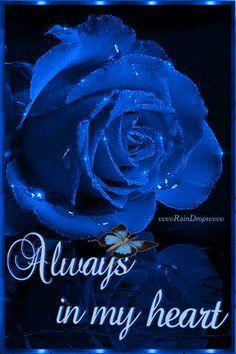 Flower Love Chris Flowers Blue Roses Rose