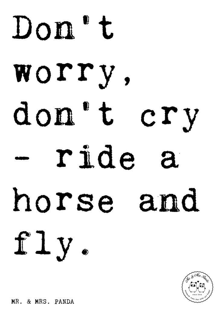 Spruch: Don't worry, don't cry - ride a horse and fly. - Sprüche, Zitat, Zitate, Lustig, Weise Pferd, Tier, Spruch, Zitat, Reiten, Freude, fly, Horse, Reiter, Freiheit