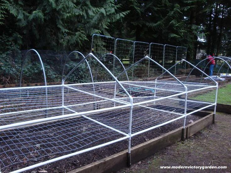 PVC Pipe Gardening