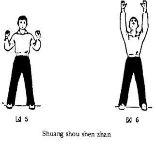 P.I.: De pie, piernas separadas, flexionar los hombros a ambos lados hacia arriba. Entrecerrar las manos colocando los puños flojos algo más alto que los hombros, con el dorso hacia atrás.  1.- Abrir las manos y al mismo tiempo, levantar al máximo posible los brazos (manteniendo las manos perpendiculares a los pies, con las palmas hacia adelante, levantando la cabeza y dirigiendo la mirada a la mano izquierda.  2.- Repetir el mismo ejercicio cambiando la dirección de la cabeza.  Indicacion