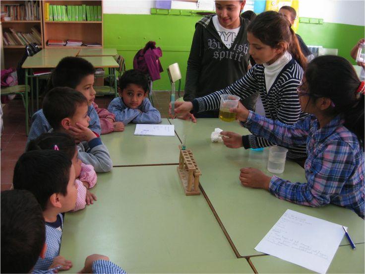 1. Escola Pau Vila (L'Hospitalet de Llobregat) - Xarxa de competències bàsiques