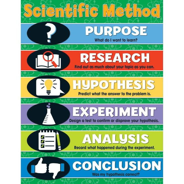 Best 25+ Scientific method ideas on Pinterest Scientific method - scientific method worksheet