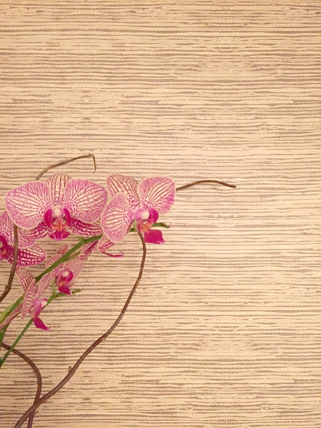 1000 images about decorating ideas inspiration on for Self stick grasscloth wallpaper