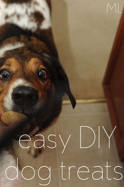ML: easy DIY dog treats!  I don't buy the dogs a lot of toys, but I do like making stuff for them on Christmas and their birthday. I would like to have plenty of stuff on hand for when the baby comes so they don't feel left out.