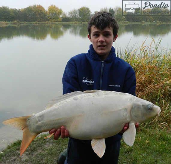 149 best images about carp fishing on pinterest carp for Carp fishing tips