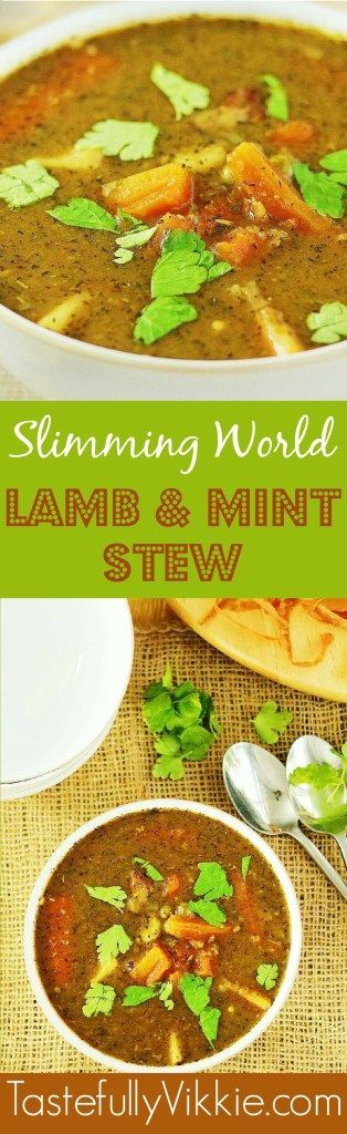 Slow Cooker, Multicooker or Pan Friendly Lamb & Mint Stew - Syn Free on Slimming World - Tastefully Vikkie