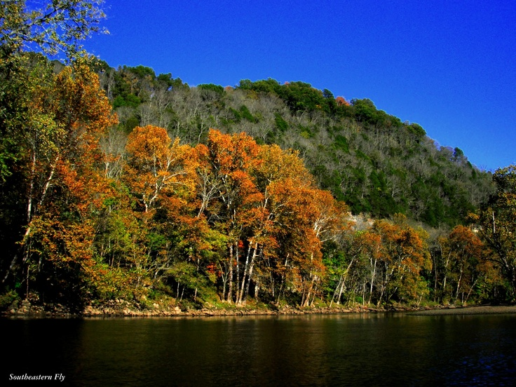 The start of Fall on my home river.  Time for big browns! - and reduced crowds!!!!!