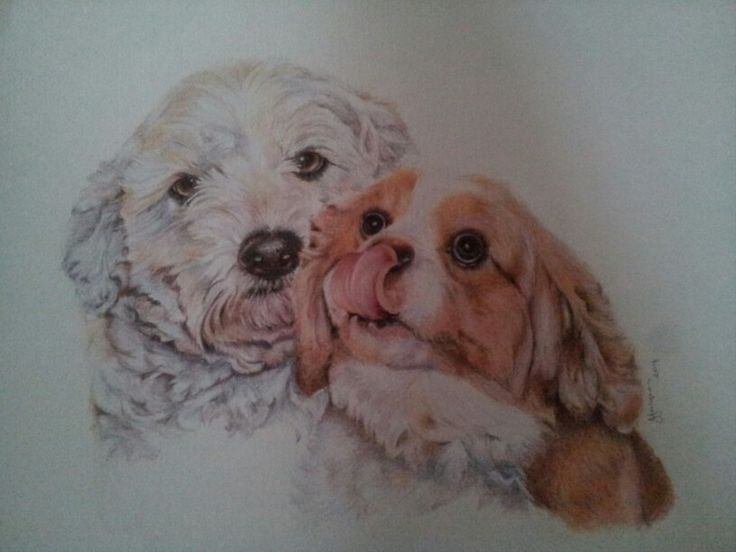 Ruby & Charlie pencil