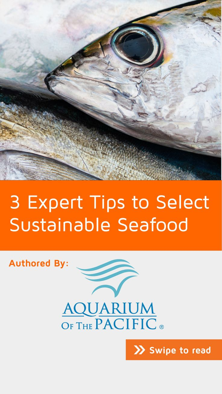 Despite the multitude of health benefits of eating more seafood, Americans only eat 44 percent of the recommended amount of seafood, and less than 40 percent of it is eaten in the home. If you're one of many who are intimidated by trying to cook fish, here are a few tips to get you going. Find it on #NoteStream under #food. Click through to download the app for free.