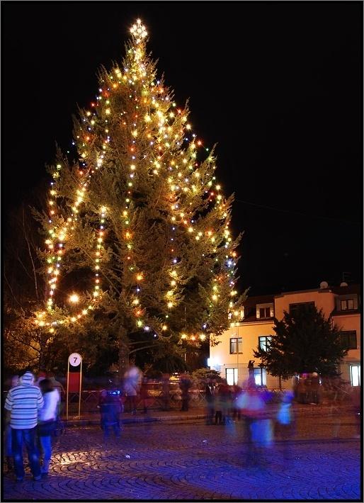 Christmas tree in Dobris, Czech Republic